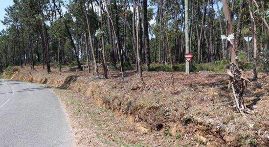 Regulamento Municipal de Uso de Fogo e de Limpeza de Terrenos