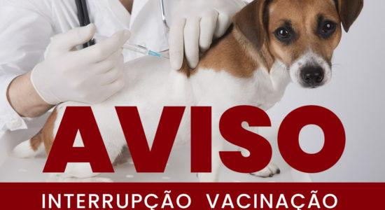 Interrupção da Campanha de Vacinação Antirrábica